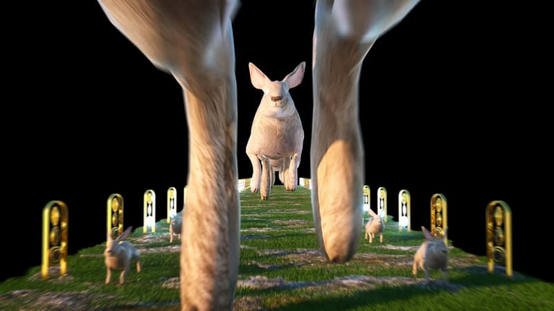 3D Bunny - Woderland VJ Loops Pack